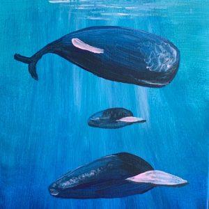 whale spuare